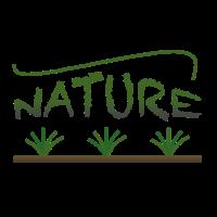 Natur ; Naturmotiv ; Pflanzen ; Gras ; Naturshirt