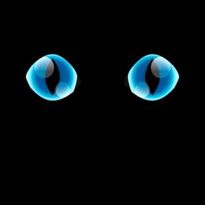 Katzenaugen Blau