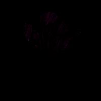 Blumenhirsch schwarz