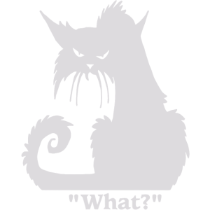 What cat funny shirt
