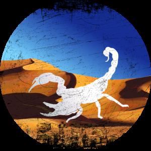 Skorpion Wüste