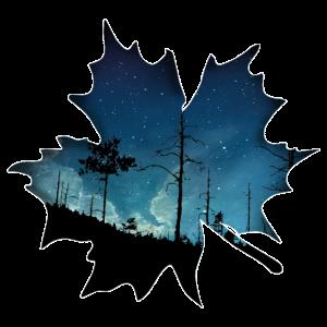 Blatt Geschenk Baum Nacht Wald Natur Sterne Ahorn