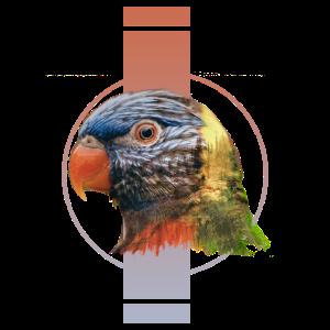 Design Papagei Surreal Surrealismus