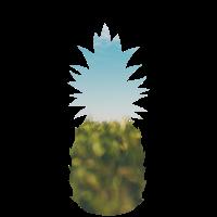 Ananas Grafik - Sommer Design mit Himmel und Wald
