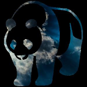 Panda in himmlischem Blau