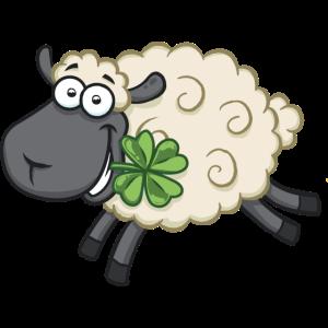 Glückliches Schaf Lamm mit Kleeblatt - Lucky sheep