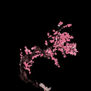 Kanji-Baum Sakura