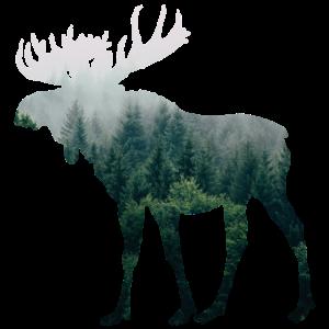 Elch Camping Jäger Naturfreund T-Shirt Geschenk