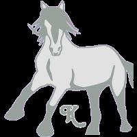 wildespferd__klein