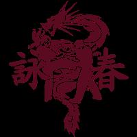 Ving Tsun Fight Scene Dragon uni