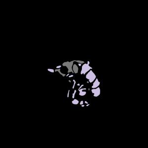 Lobstarcolor