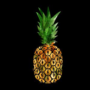 Pineapple Border