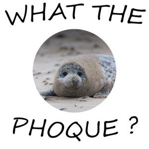 WHAT THE PHOQUE