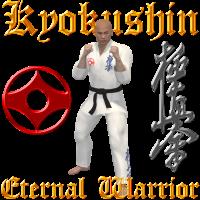 Kyokushin Krieger