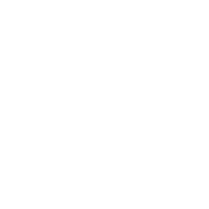 BBQ Junkie Barbeque Logo