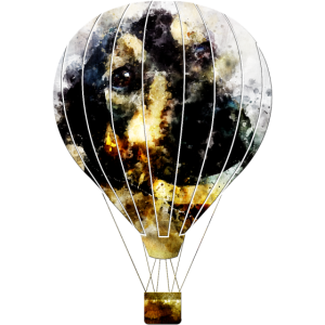 gxp hot air balloon dog - heissluftballon hund