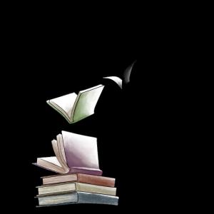 Geschenk für Buchliebhaber Literatur Roman Buch