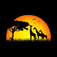 Giraffenfamilie im Sonnenuntergang - Afrika