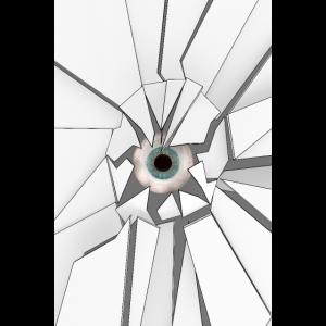 Das Auge 03