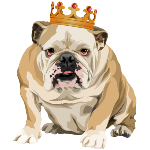 The real King