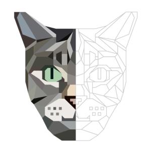 Katze, kubistisches Gesicht