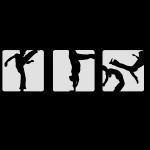 Capoeira Zebratanz