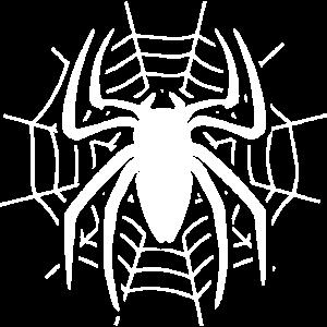 Loxosceles im Spinnennetz Spinne Geschenkidee