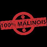 100_malou_rouge