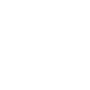 HIGH SCHOOL LEVEL COMPLETE, Hochschule, Gamepad