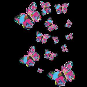 Schmetterling schwarm