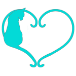 Chat coeur turquoise