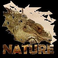 Eidechse Natur naturecontest Reptil Krokodil