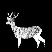 Hirsch Design - Hirsch im Wald mit Hirschgeweih