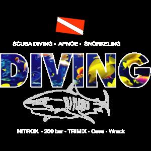 Diving Snorkeling Apnoe Tauchen