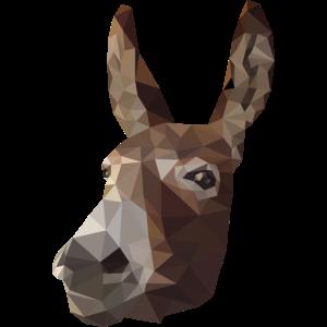 Polygon Donkey