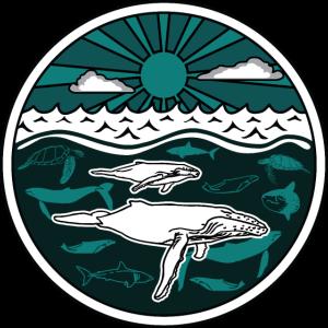 Buckelwalfamilie Meerestiere Sonne Ozean Meer 2