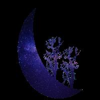 Mond Sternenhimmel Bäume Mondstern T-Shirt