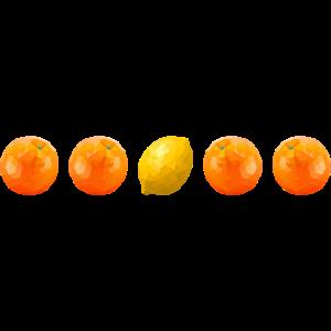 Orangen und Zitrone in einer Reihe