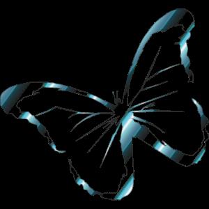 Silber Blau Schmetterling perfekt für Sommer Idee