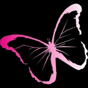 Pinker Schmetterling perfekt für Sommer als Idee