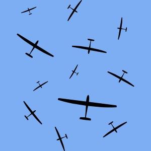Segelflieger PULK Geschenk Flieschen