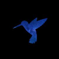Vogel Weltall Shirt Unisex