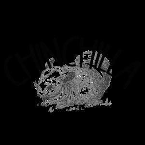 Chinchilla Shirt Tier Haustier