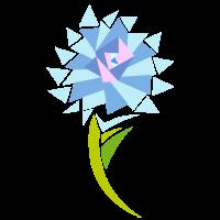 blaue Sonnenblume