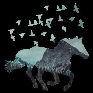 280521_PferdVögelSilhouet