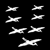 Storche im Flug