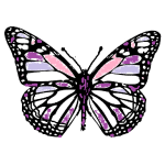 butterfly_design_1