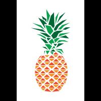 Ananas Polygon