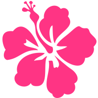 Surfer Flower Hibiskus