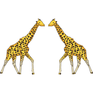 Giraffe Afrikanische Tiere 2 / 5